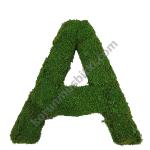 korunmuş yosun harf A