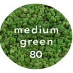 ren geyiği yosunu - korunmuş liken yosun light green