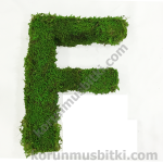Preserved Moss Letter f