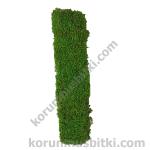 Preserved Moss Letter I