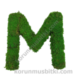 Preserved Moss Letter M