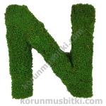Preserved Moss Letter N