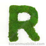 Preserved Moss Letter R