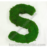 Preserved Moss Letter S