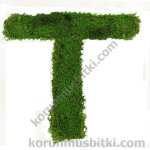 Preserved Moss Letter T