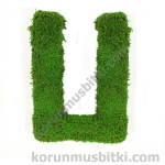 Preserved Moss Letter U