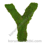 Preserved Moss Letter Y