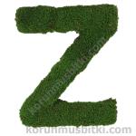 Preserved Moss Letter Z