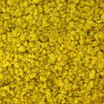 liken ren geyiği yosunu lime sarı