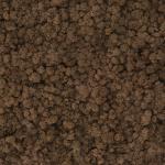 liken ren geyiği yosunu kahverengi