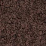 liken ren geyiği yosun siena kahverengi