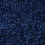 liken ren geyiği yosunu classic blue mavi