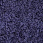liken ren geyiği yosunu aubergine mor