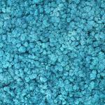 liken ren geyiği yosunu ice blue mavi