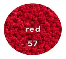 Kırmızı liken