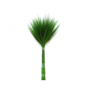 korunmuş bitki barley yeşil