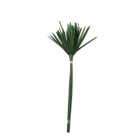 korunmuş papyrus yeşil