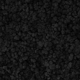 liken ren geyiği yosunu black siyah